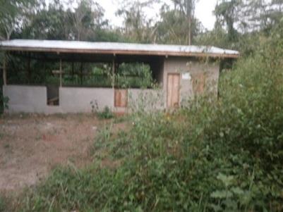 Hangar de Bissombo